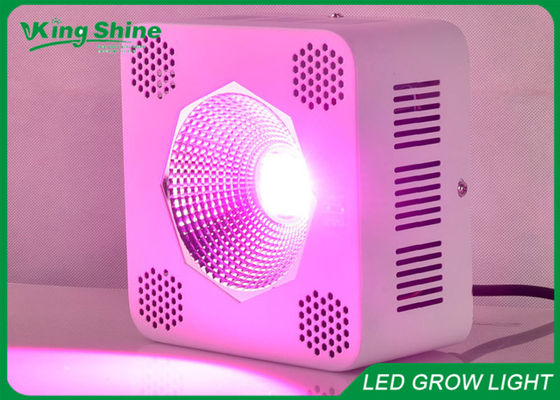 Cina Chip Single 64 x 3W Cob Led Seedling Grow Light Green / Blue pemasok
